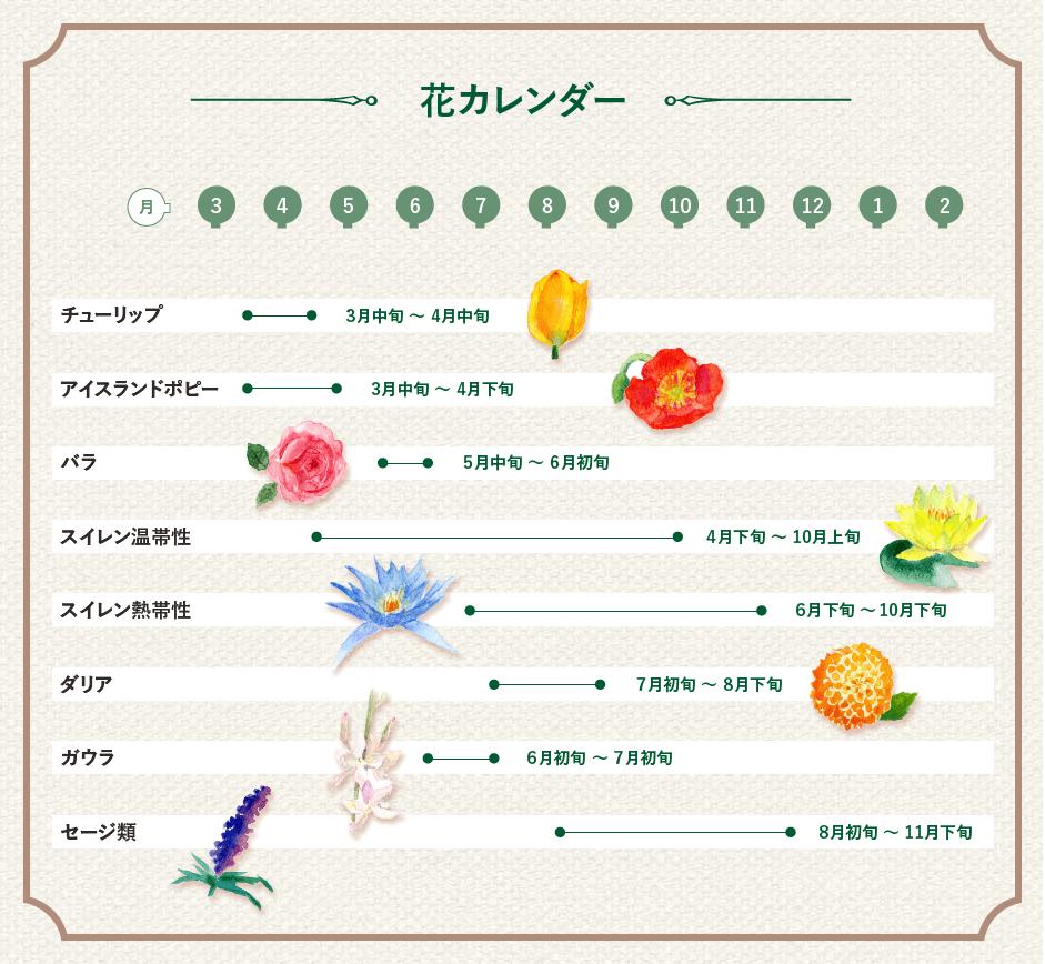 見ごろの花カレンダー