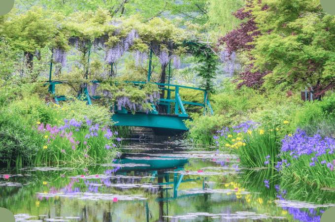 画像:藤と睡蓮が咲く季節の水の庭。