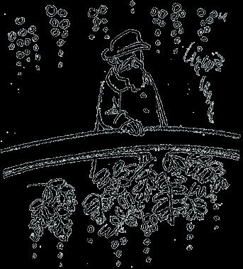 イラスト:太鼓橋から池を眺めるモネ